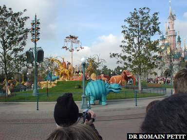 Album photos Le Carnaval du Roi Lion par Romain Petit