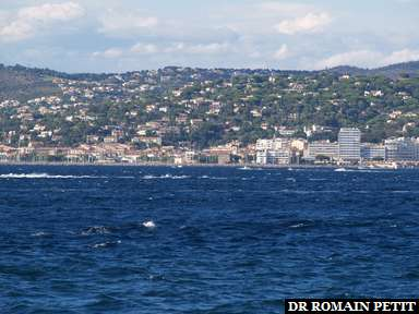 Album photos Sainte-Maxime par Romain Petit